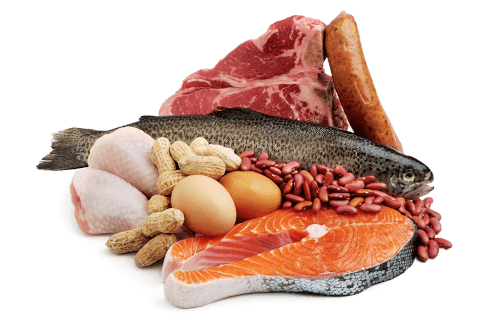 proteins, fish, chicken, eggs, meat and nuts